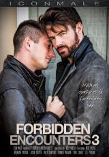 Forbidden Encounters 3
