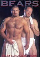Bathhouse Bears