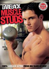 Bareback Muscle Studs